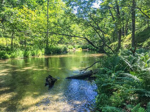 Ice Age Trail Mecan River Segment