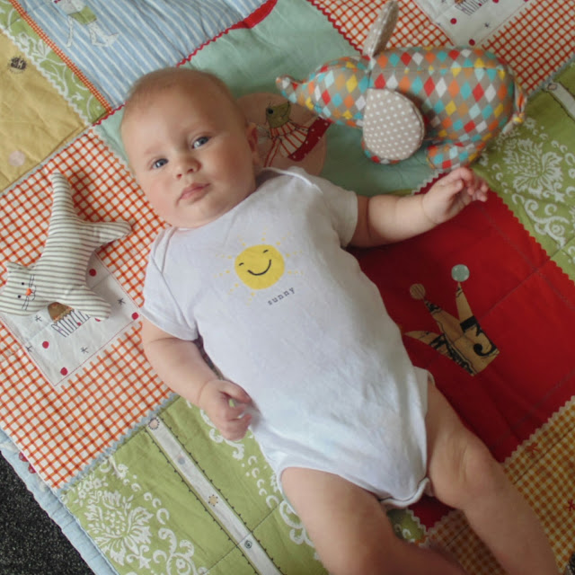Barney 3 months old, cat rattle  elephant toy, gap sunny vest