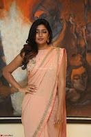 Eesha Rebba in beautiful peach saree at Darshakudu pre release ~  Exclusive Celebrities Galleries 063.JPG