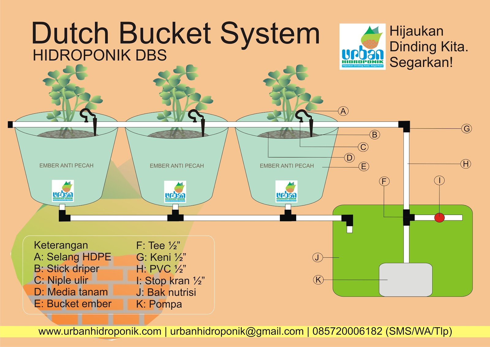 Cara Membuat Hidroponik Dbs Dutch Bucket System Urban