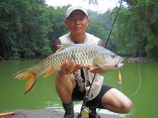 Umpan-Ikan-Tombro-Besar