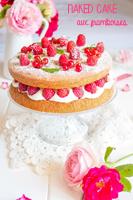 http://moi-gourmande.blogspot.fr/2016/07/naked-cake-aux-framboises.html