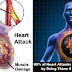 80% of Heart Attacks Could Be Avoided by Doing These 5 Easy Things!