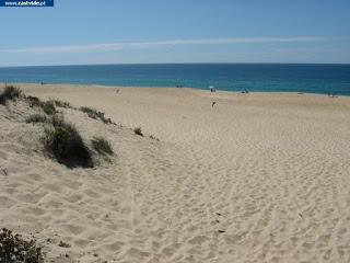 BEACH / Praia da Costa de Santo André, Santiago do Cacém, Portugal