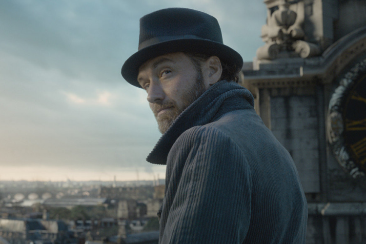 Jude Law as Albus Dumbledore in Fantastic Beasts: The Crimes of Grindelwald