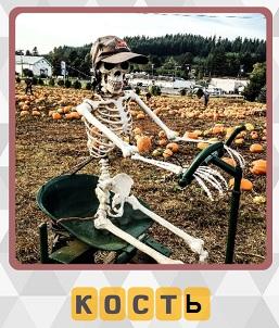сидит скелет в кепке за управлением тележки на 7 уровне в игре 600 слов