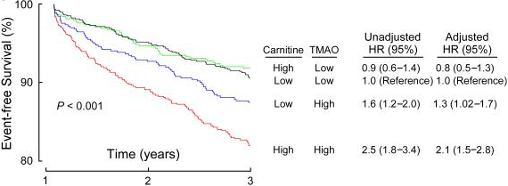 TMAO: Eggs, Meats and Your Cardio-Metabolic Health | You Can Sill Eat Eggs & Meat, If You Got 'the Right Gut Bugs' 10