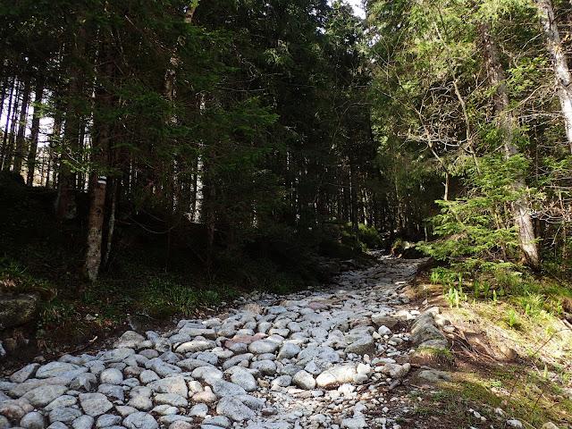 Odejście (dolina Roztoki) przy Wodogrzmotach