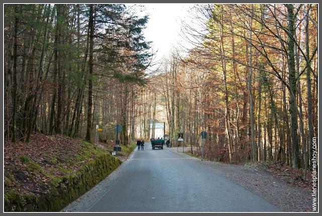 Subida hacia Castillo Neuschwanstein Baviera (Alemania)