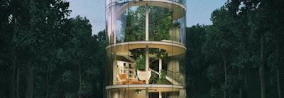 casa di vetro con albero all'interno