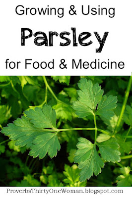 How to Grow and Use Parsley for Medicine and Food
