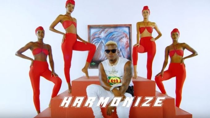 VIDEO: Harmonize X Rayvanny – Paranawe_Download Now
