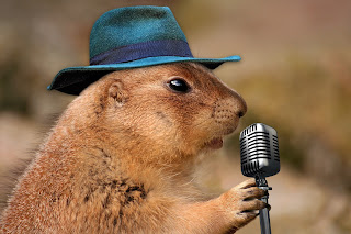 Prairie Dog with hat speaking into a microphone