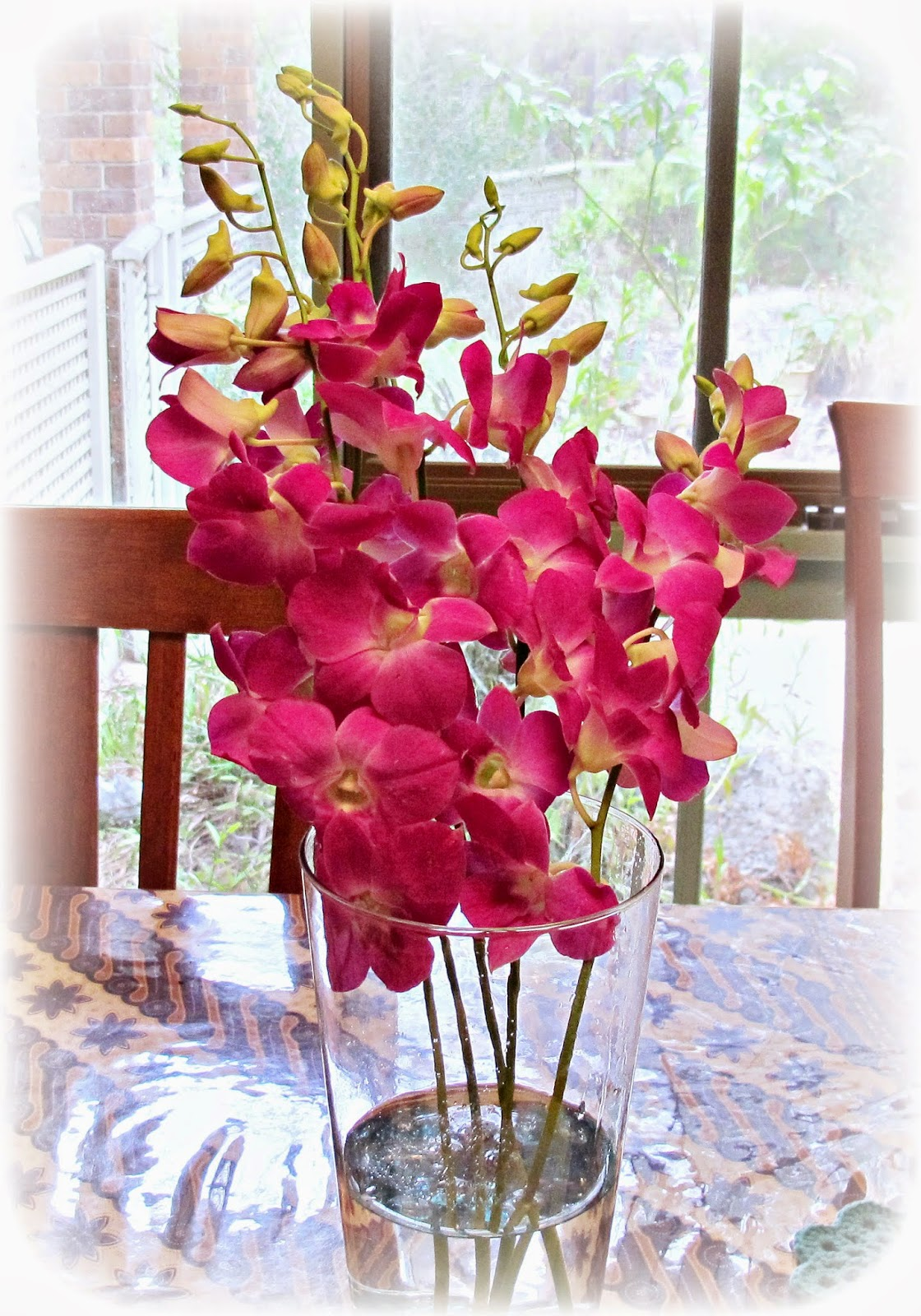 image orchids singapore purple fuchsia