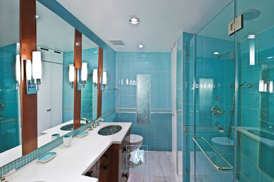 Frameless Showers Doors