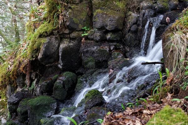 écosse highlands île mull tobermory randonnée aros park cascade