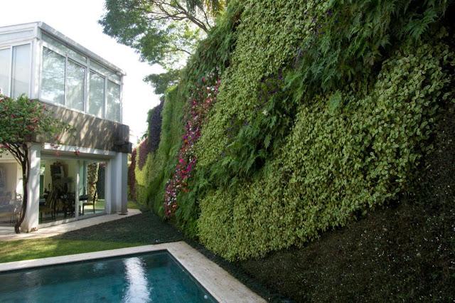 paisagismo-vertical-plantas-muro-com-sombra