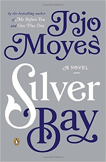 Silver Bay book cover