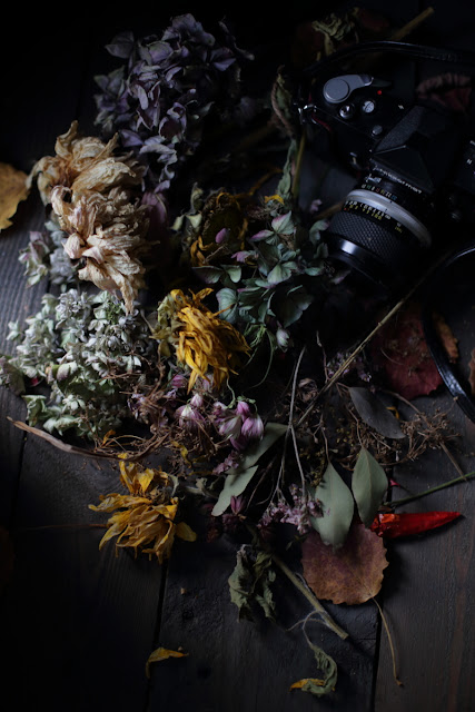 fadingbeauty,deadflowers, fade away, still life, valokuvaus,