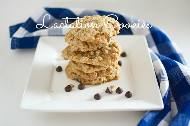 Make: Lactation Cookies | My Darling Days