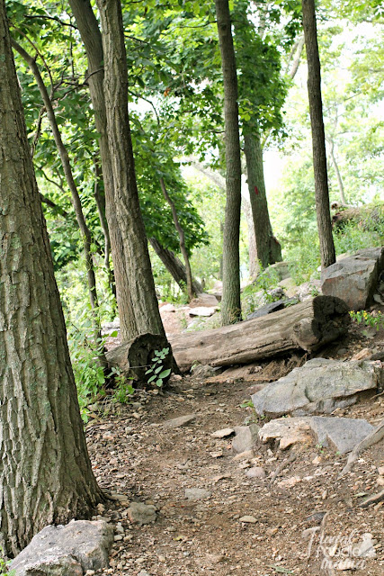 The Maryland Heights Trail, a 4 mile hike just off from the Appalachian Trail, is a challenging hike with rewarding views of Harpers Ferry and the Potomac & Shenandoah Rivers.