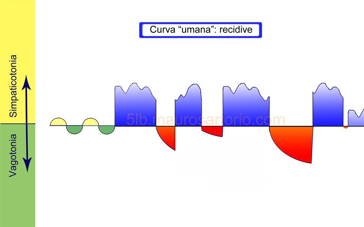 Curva bifasica sclerosi multipla Hamer