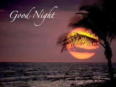 Dania ji sms shayari good night sms - Good night nature pic ...