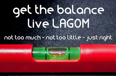 IKEA and its LAGOM programme