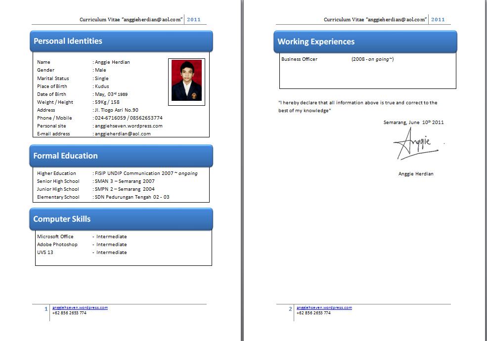 Contoh Format Curriculum Vitae Doc Nemetas Aufgegabelt Info