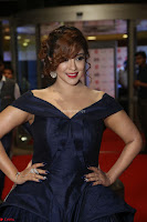 Payal Ghosh aka Harika in Dark Blue Deep Neck Sleeveless Gown at 64th Jio Filmfare Awards South 2017 ~  Exclusive 073.JPG