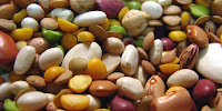 The common bean comes in many shapes, sizes and colors. (Image Credit: Roger Smith via Flickr) Click to Enlarge.