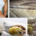 S-ar putea sa imparti patul cu 1,5 milioane de acarieni in fiecare noapte! Scapa de ei odata pentru totdeauna prin aceasta metoda simpla!
