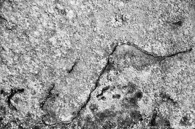 Estampe japonaise naturelle en grès et lichens de Fontainebleau