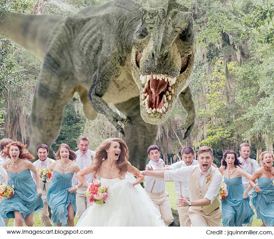 Best Themed Weddings Gallery Wedding Decoration Ideas