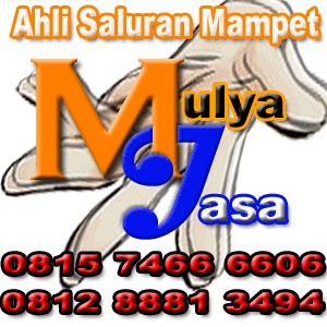 mulya-jasa-ahli-menangani-saluran-mampet