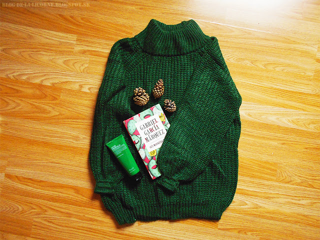 Raglan Sleeve Chunky Turtleneck Sweater