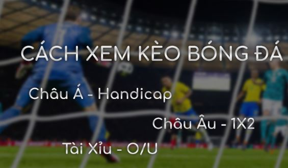 Ty le cuoc | Tỷ lệ cược bóng đá Cup C1 hôm nay: Giải thích tỷ lệ ...