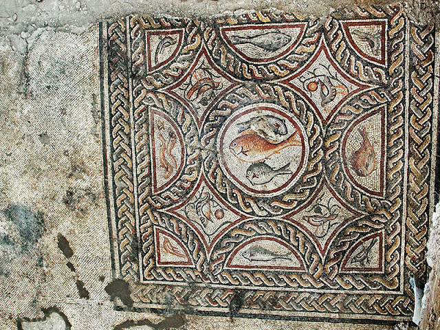 Additional 1,700 year-old mosaic discovered in Lod