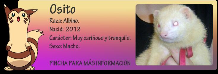 http://almaexoticos.blogspot.com.es/2014/11/osito-abandonado-en-la-perrera.html