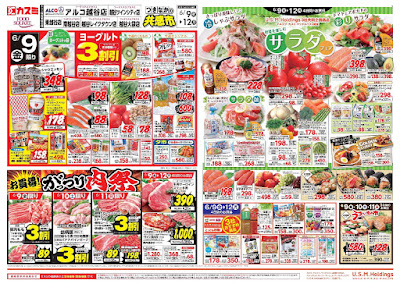 【PR】フードスクエア/越谷ツインシティ店のチラシ6月9日号