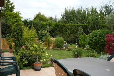le jardin de pacalou ce que je vois de ma terrasse. Black Bedroom Furniture Sets. Home Design Ideas
