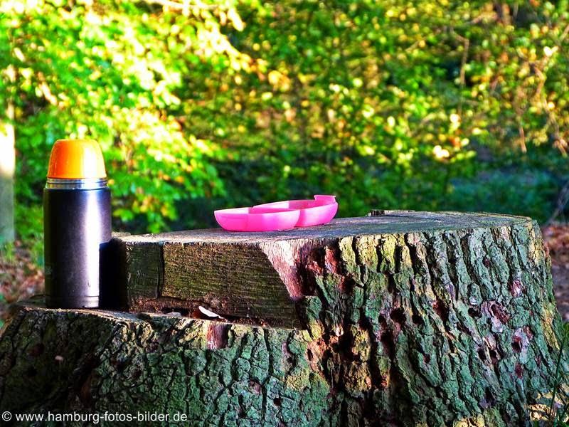 Kleine Kaffeepause bei einem Picknick im Rodenbeker Quellental in Hamburg