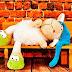 10 Zapatillas Bailarinas de Crochet Patrones