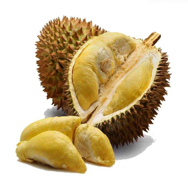 Durian Petruk, Manfaat Durian Petruk, Khasiat Durian Petruk