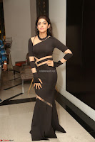 Pranitha Subhash in a skin tight backless brown gown at 64th Jio Filmfare Awards South ~  Exclusive 185.JPG