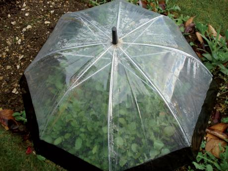 10 Ways To Repurpose Old Umbrellas