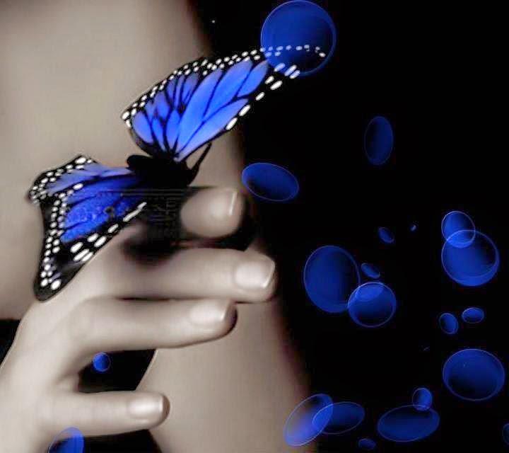 mariposa azul para cosas que siento