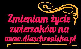 dlaSchroniska.pl - zmień życie zwierzaka