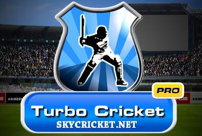 Online Turbo cricket pro game
