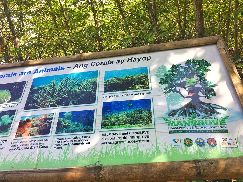PUERTO GALERA MANGROVE AND ECOTOURISM AREA hours of operation